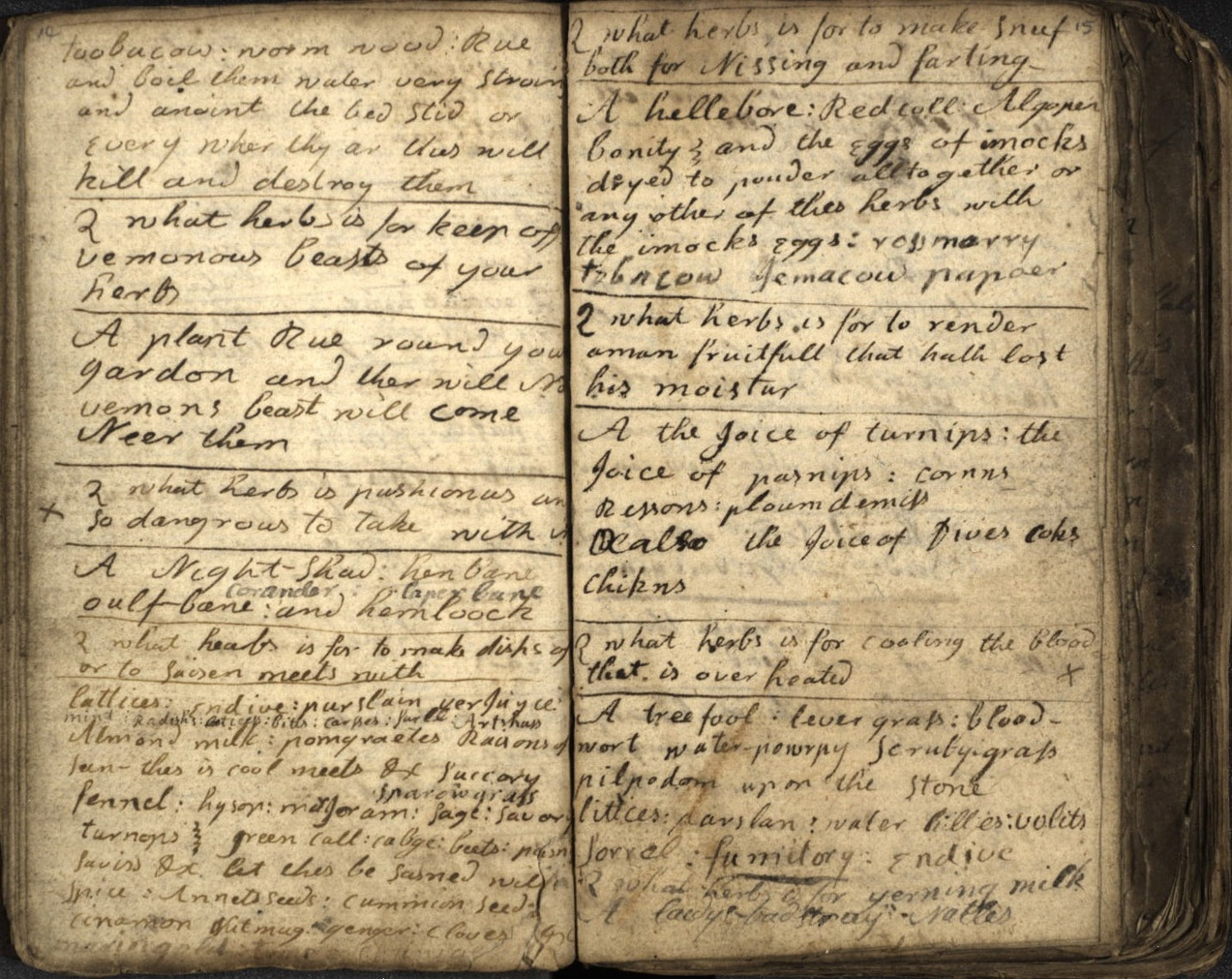18th century Scottish cunning man's herbal grimoire