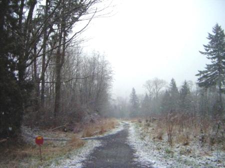 A snowy crossroad