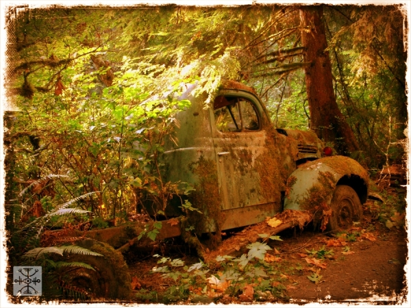 An old Dodge rotting in the forest