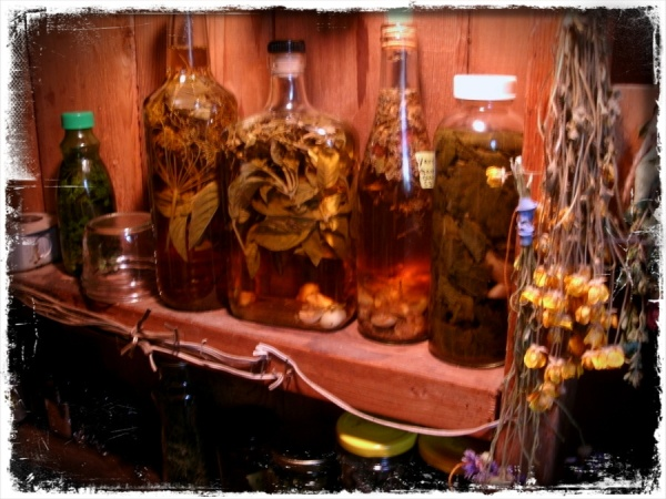 Herbal vinegars infuse in the pantry